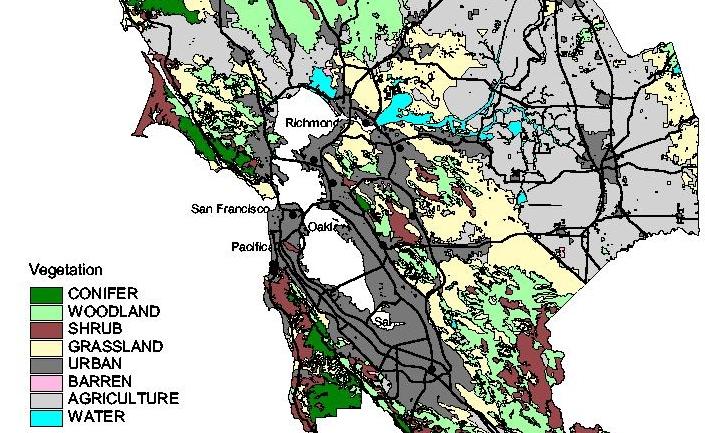 Vegetation Types Bay / Delta Bioregion
