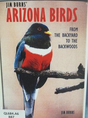 Arizona Birds--From the Backyard to the Backwoods