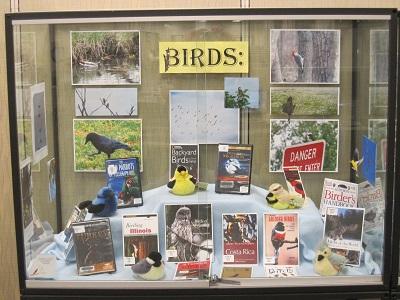 Birds--Case 1