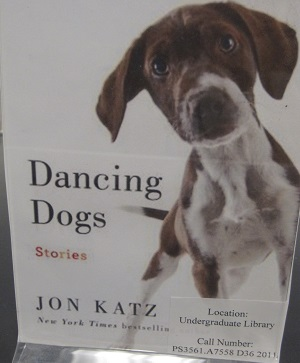 Dancing Dogs Stories