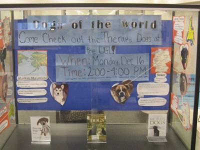 Dogs of the World--Whole Case