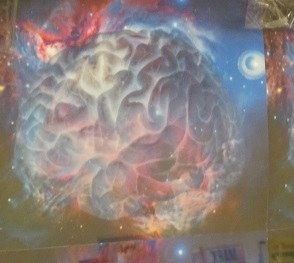 Imagination--Brain