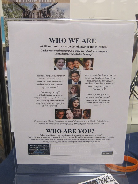Inclusive Illinois--Who We Are-Who Are You?
