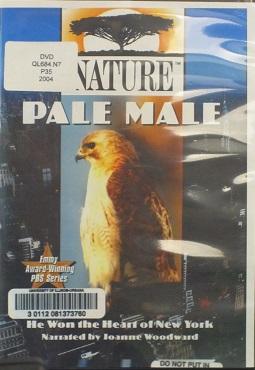 Nature--Pale Male