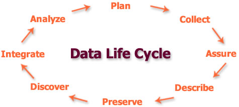 data life cycle image