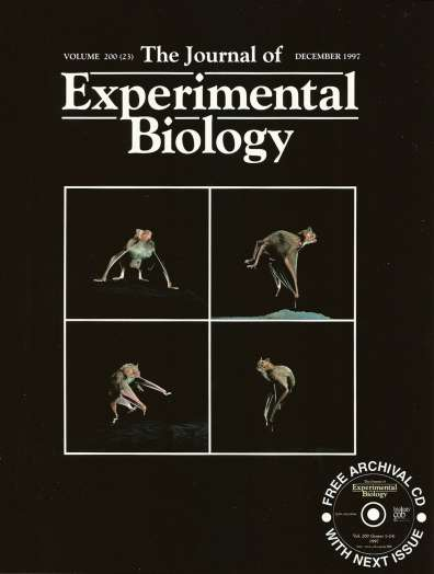 Journal of Experimental Biology