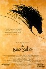 Black Stallion dvd cover