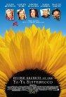 Divine Secrets of the Ya-Ya Sisterhood dvd cover