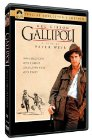 Gallipoli dvd cover
