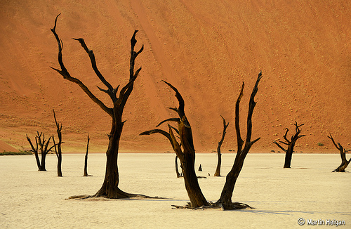 Namibia by Martin Heigan