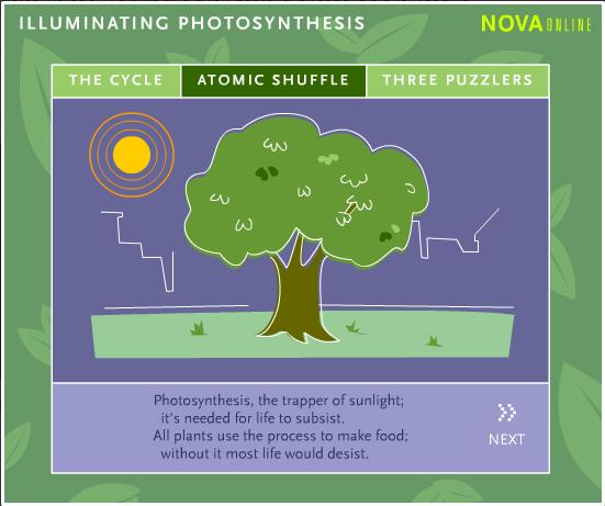 Illuminating Photosynthesis