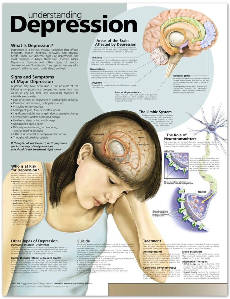 Understanding Depression Fact Sheet
