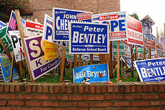 campaign signs on lawn