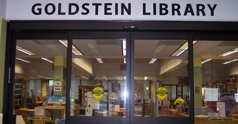 Goldstein Front Doors