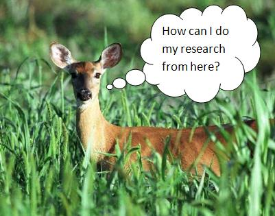 Deer wants to know how to get off campus access to library databases.