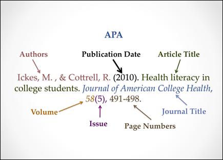 APA Article Citation