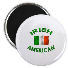 White button with the words IRISH AMERICAN written in green and the Irish flag in the middle.