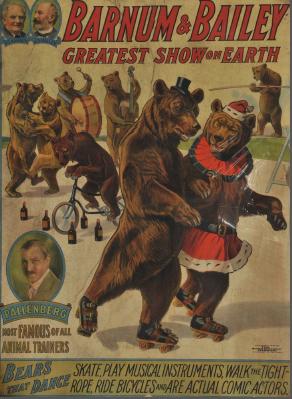 barnum and bailey dancing bears