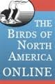 The Birds of North America Online - trial