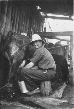 "Ned Nash milking a cow at the family farm, ""Willow Bank,"" in Eugowra, NSW."