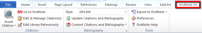 Screen shot of Endnote tab