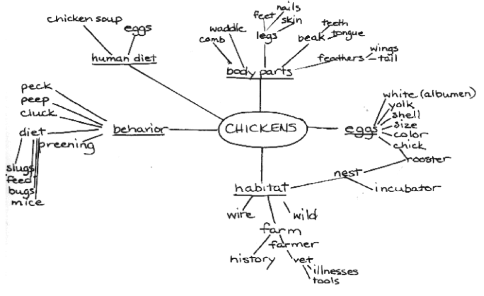 example of mindmap