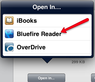 Open EPUB ebook in Bluefire on iPad