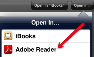 Open PDF in Adobe Reader on iPad