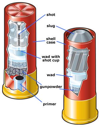 Shotgun Shell Type