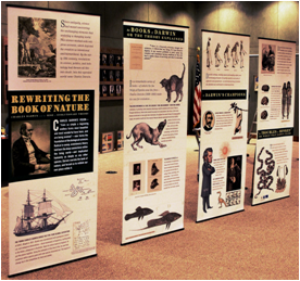 Exhibit Banners