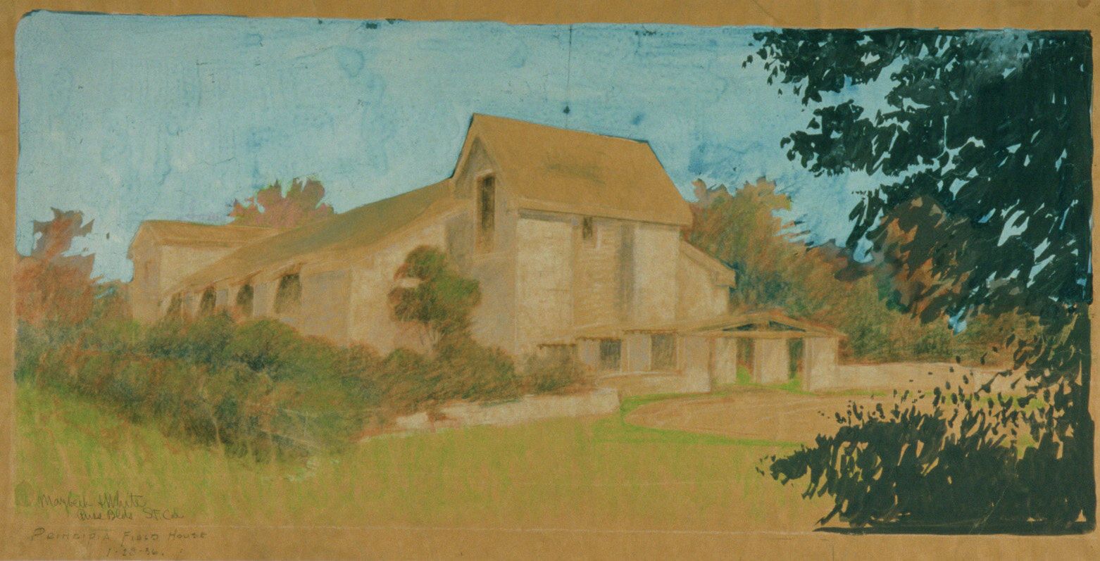 Maybeck & White, Field House, 1936, Pastel, graphite on kraft paper, 33 x 46 in.