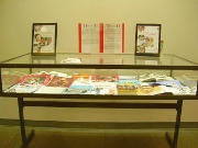 A view of  this display from the front of the case.