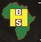 Black History Studies logo.