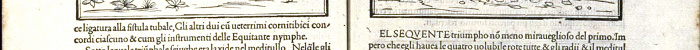 Cross section of an ancient Latin text