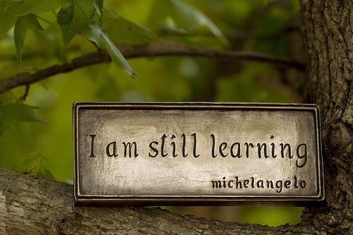 "Plaque sitting on tree branch that says, ""I am still learning. -Michaelangelo"""