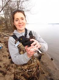 Wildlife biologist holding a duck