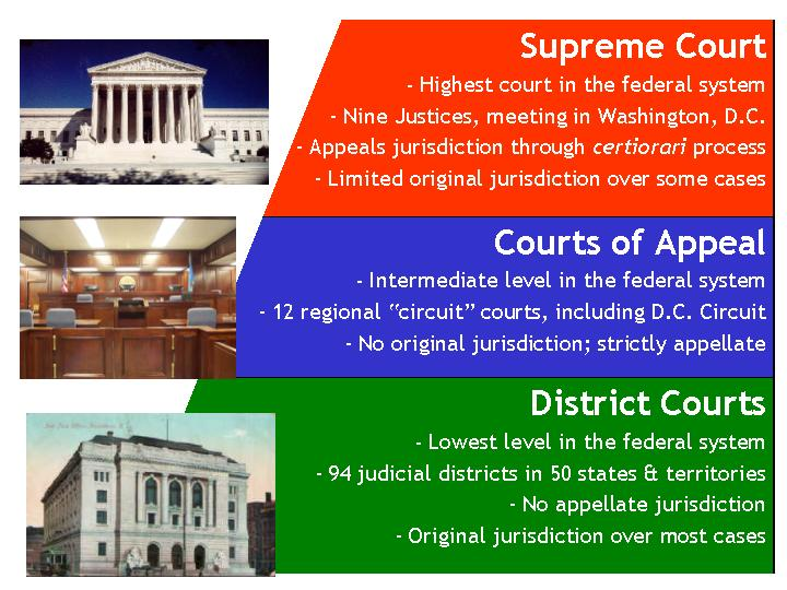 Federal courts chart image