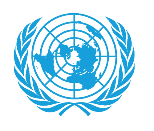Link to the United Nations website