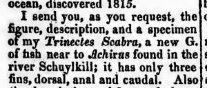 Rafinesque 1832