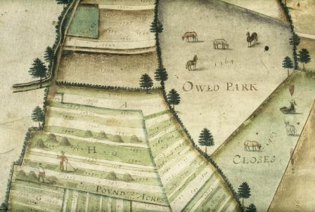 Detail from Laxton estate map
