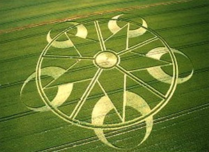 crop circle in a field