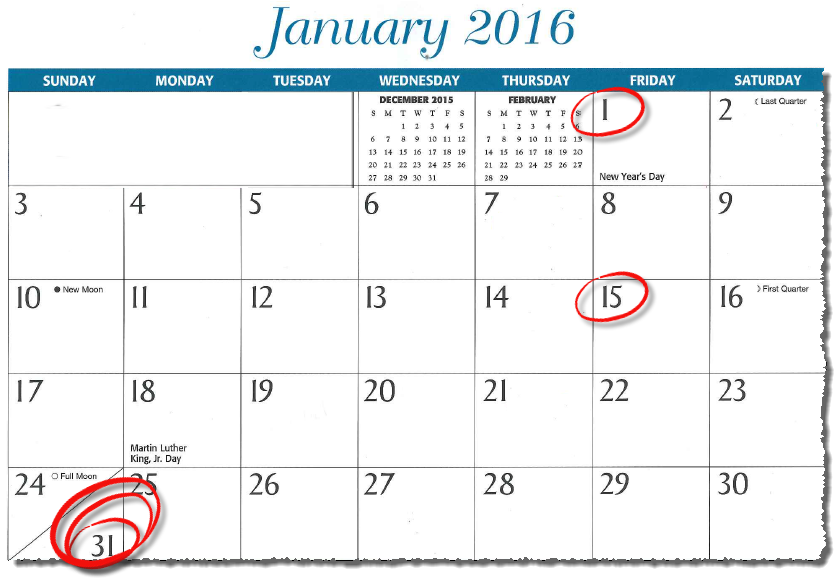 January calendar with 1, 15, and 31 dates circled, emphasizing the 31st deadline