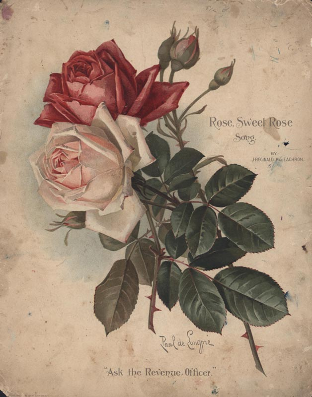 "MacEachron, J. Reginald. ""Rose, Sweet Rose"". Illus. Paul de Longpré. Publisher: J. R. MacEachron. 1905. (HW-02719)"