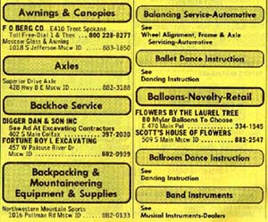 Yellow Pages - example of a database