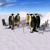 Image of Penguins Having a Meeting