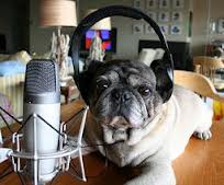Image of Dog with Headphones