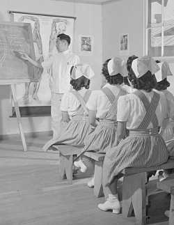 Women with curls, white starched hats, and uniforms seated on benches facing man lecturing at chalkboard with anatomical drawings behind