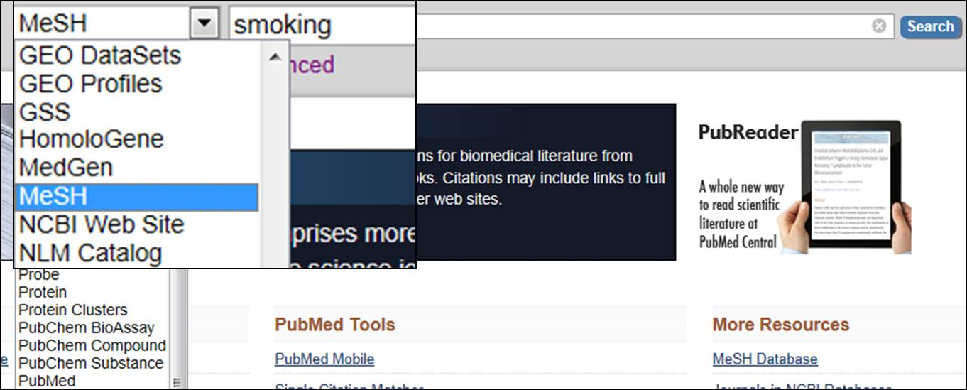 PubMed MeSH lookup