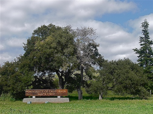 Photo of UCSC redwod sign