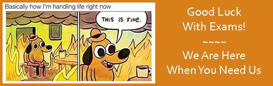 Cartoon about exams